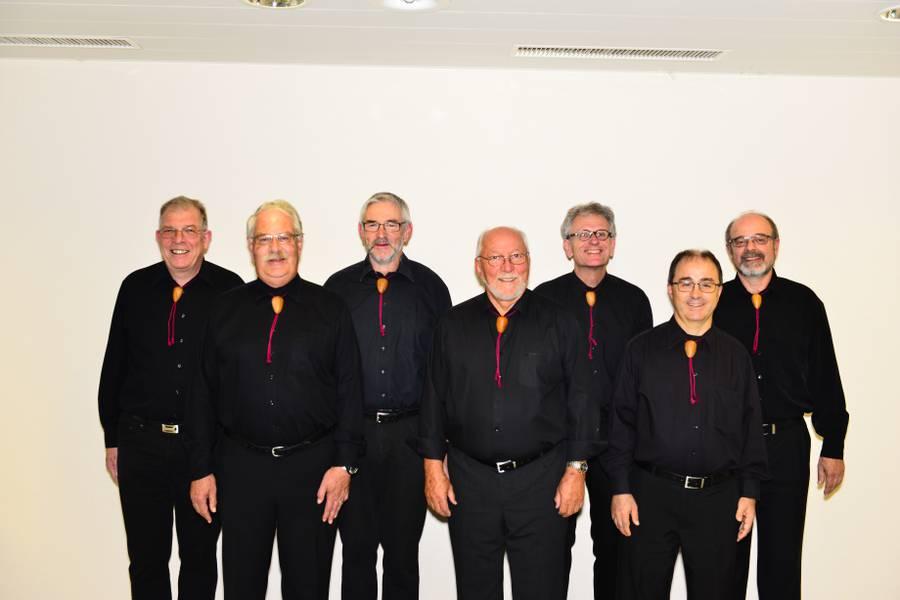 Gruppenfoto des Ensembles PlusMinusAcht. Es hat 7 Männer.